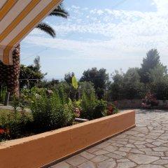 Отель Panorama House Греция, Ситония - отзывы, цены и фото номеров - забронировать отель Panorama House онлайн фото 18