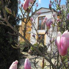 Отель Villa Sunset Болгария, Варна - отзывы, цены и фото номеров - забронировать отель Villa Sunset онлайн фото 7