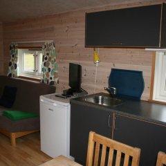 Отель Odda Camping Коттедж с различными типами кроватей фото 10