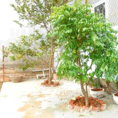 Отель Phuong Thanh Homestay Далат фото 3