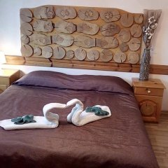Отель Guest House Planinski Zdravets 3* Стандартный номер с двуспальной кроватью фото 4