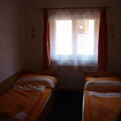 Отель Penzion V Maštali детские мероприятия фото 2