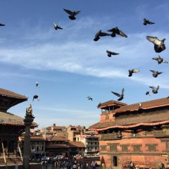 Отель Shaligram Hotel Непал, Лалитпур - отзывы, цены и фото номеров - забронировать отель Shaligram Hotel онлайн приотельная территория фото 2