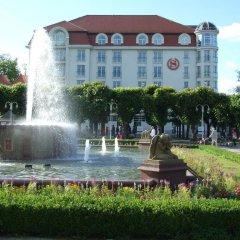 Отель Kamienica Sopocka