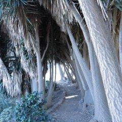 Отель Haciendas del Valle - Las Kentias пляж
