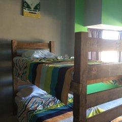 Baja's Cactus Hostel Стандартный номер фото 8