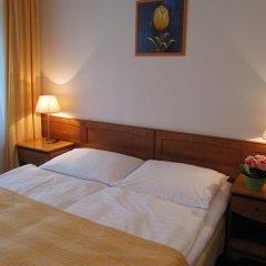 Hotel Jana / Pension Domov Mladeze Стандартный номер с двуспальной кроватью