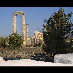 Saadet Турция, Алтинкум - 1 отзыв об отеле, цены и фото номеров - забронировать отель Saadet онлайн приотельная территория