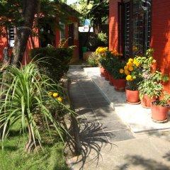 Отель New Summit Guest House Непал, Покхара - отзывы, цены и фото номеров - забронировать отель New Summit Guest House онлайн фото 10