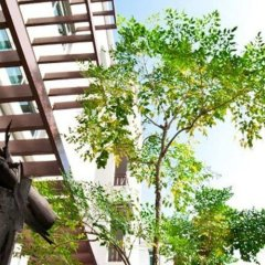 Отель The Meet Green Apartment Таиланд, Бангкок - отзывы, цены и фото номеров - забронировать отель The Meet Green Apartment онлайн развлечения