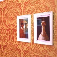 Rivoli Cinema Hostel Стандартный номер разные типы кроватей фото 12