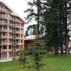 Отель TES Flora Apartments Болгария, Боровец - отзывы, цены и фото номеров - забронировать отель TES Flora Apartments онлайн фото 5