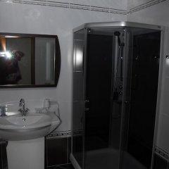 Гостиница Белый Грифон Улучшенный номер с различными типами кроватей фото 12