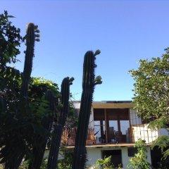 Отель Welcoming vibes Ямайка, Треже-Бич - отзывы, цены и фото номеров - забронировать отель Welcoming vibes онлайн фото 2