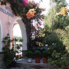 Отель Palladion Греция, Остров Санторини - отзывы, цены и фото номеров - забронировать отель Palladion онлайн фото 7