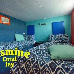 Отель Jasmine Coral Jay комната для гостей