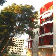Отель Guesthouse Albion фото 6