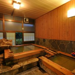 Отель Yamabiko Ryokan Минамиогуни бассейн фото 2