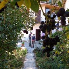 Отель Nina B&B Армения, Дилижан - отзывы, цены и фото номеров - забронировать отель Nina B&B онлайн помещение для мероприятий