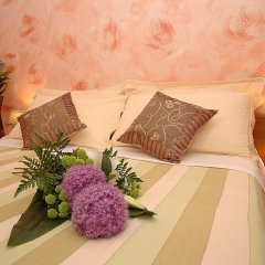 Primavera Hotel 2* Стандартный номер с различными типами кроватей