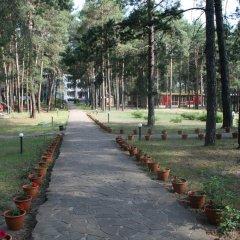 Гостиница Буймеровка Сосновый & SPA – курорт фото 2