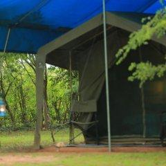 Отель Big Game Camp Yala Другое фото 8