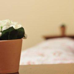 Vega Hostel Стандартный номер с различными типами кроватей фото 5
