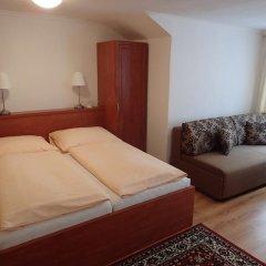 Отель Paderewski Чехия, Карловы Вары - отзывы, цены и фото номеров - забронировать отель Paderewski онлайн комната для гостей фото 4