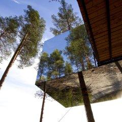 Tree Hotel фото 2