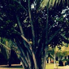 Hotel Lagoon Paradise фото 22