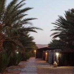 Отель Auberge Sahara Garden Марокко, Мерзуга - отзывы, цены и фото номеров - забронировать отель Auberge Sahara Garden онлайн помещение для мероприятий