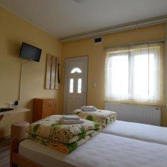 Hostel Zlatna Greda Нови Сад комната для гостей фото 4