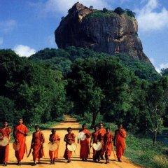 Отель FEEL Villa Шри-Ланка, Калутара - отзывы, цены и фото номеров - забронировать отель FEEL Villa онлайн развлечения