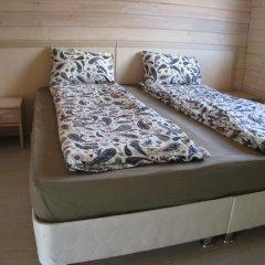 Эко-отель Веточка 2* Апартаменты 2 отдельные кровати фото 4
