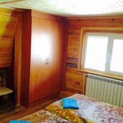 Гостевой Дом Олимпия удобства в номере