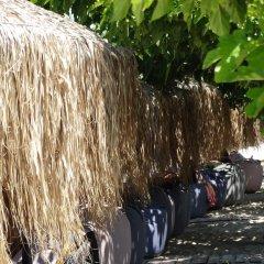 Отель Rigakis Греция, Ханиотис - отзывы, цены и фото номеров - забронировать отель Rigakis онлайн фото 6