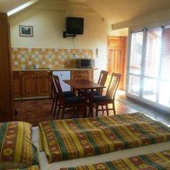 Отель Pension Platan 3* Студия с различными типами кроватей фото 11