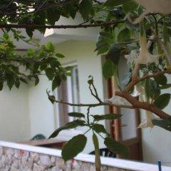 Cirali Hotel 3* Стандартный номер с различными типами кроватей фото 4