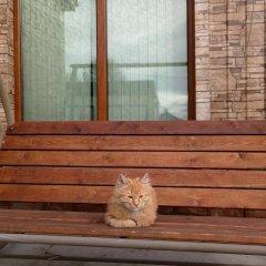 Гостиница guest house Elizaveta сауна