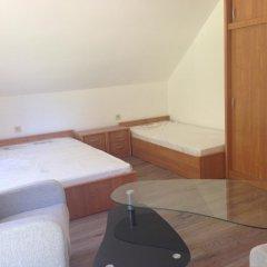 Отель Gościniec Wigry 1 комната для гостей фото 3