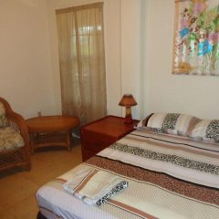 Отель Tirina's Writer's Retreat комната для гостей фото 3