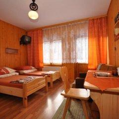 Отель Sfinks Польша, Закопане - отзывы, цены и фото номеров - забронировать отель Sfinks онлайн удобства в номере