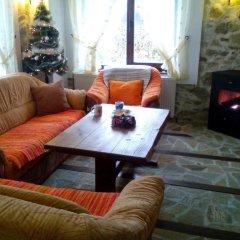 Отель Guest House Elitsa Болгария, Чепеларе - отзывы, цены и фото номеров - забронировать отель Guest House Elitsa онлайн комната для гостей фото 5