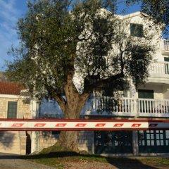 Апартаменты Apartments TMV Dragovic фото 2