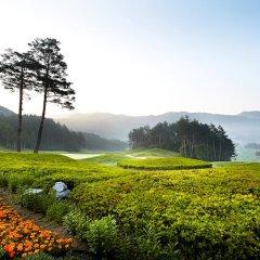 Отель Yongpyong Resort Dragon Valley Hotel Южная Корея, Пхёнчан - отзывы, цены и фото номеров - забронировать отель Yongpyong Resort Dragon Valley Hotel онлайн приотельная территория фото 2