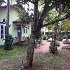 Sylvester Villa Hostel Negombo Кровать в общем номере с двухъярусной кроватью фото 2