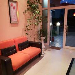Отель Dalia Болгария, Несебр - отзывы, цены и фото номеров - забронировать отель Dalia онлайн комната для гостей фото 5