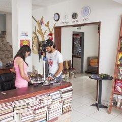 Отель Lion Hostel Мексика, Гвадалахара - отзывы, цены и фото номеров - забронировать отель Lion Hostel онлайн развлечения