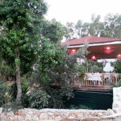 Eucalyptus Pension Турция, Патара - отзывы, цены и фото номеров - забронировать отель Eucalyptus Pension онлайн парковка