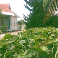 Nanda Wunn Hotel - Hostel фото 14